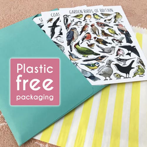 Plastic Free Packaging on Alexia Claire Postcards Pack